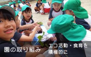 園の取り組み エコ活動・食育を積極的に