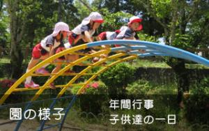 園の様子 年間行事 子供たちの一日